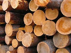 Сделано из дерева